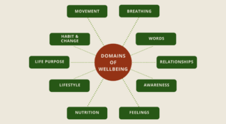 Map of holistic wellbeing